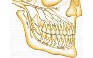 Почему болят все зубы сразу