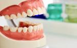 Зубы нижней челюсти