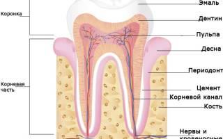 Гранулема зуба что это такое
