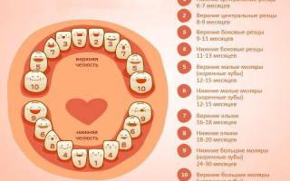 Во сколько месяцев лезет первый зуб