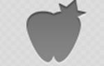 После пломбировки болит зуб